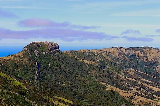 Akaroa Caldera Overlooking the South Pacific, New Zealand by Sarah Lilja