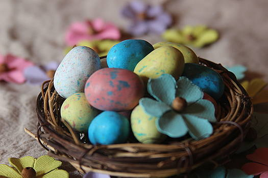Cathy Lindsey - Easter Eggs And Flower In Nest