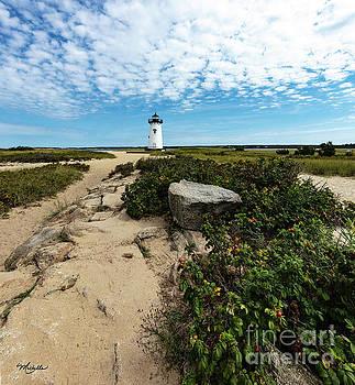 Michelle Constantine - Edgartown Lighthouse Marthas Vineyard