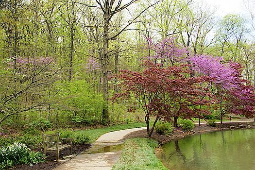 Allen Nice-Webb - Edith Carrier Arboretum Pathway