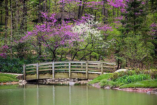 Allen Nice-Webb - Edith_Carrier_Arboretum