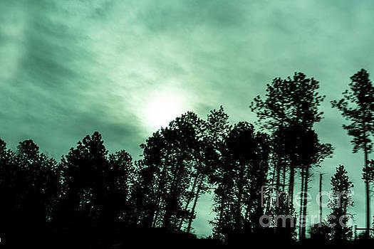Eerie Night Sky by Carol Bilodeau