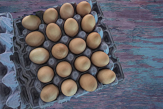 Eggs - Fresh from the Farm by Mitch Spence