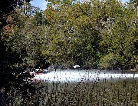 Egret Chasing Speed Boat by Carolyn Hebert