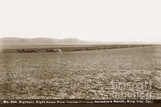 California Views Archives Mr Pat Hathaway Archives - Eighteen Eight Horse Plow Teams on the Claus Spreckle