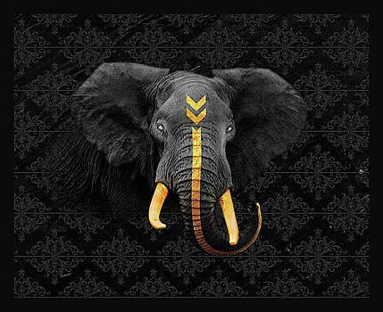 Elefante by Felipe Navega
