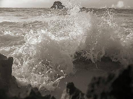 Elegant Coastal Splash Bermuda by Betsy Knapp