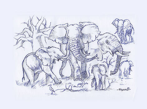 Elephant and Cattle Egrets Sketches by Anthony Mwangi