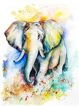 Elephant in Colors by Rowena Delfter