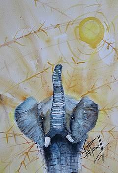 Elephant Walk by George Powell