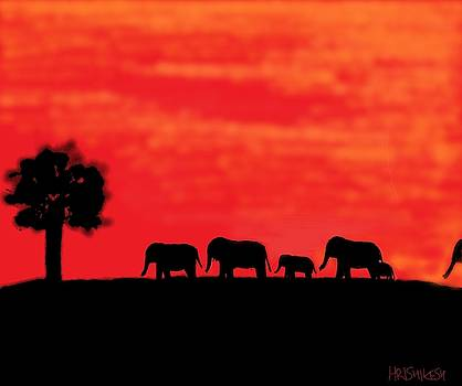 Elephants in Minneriya by Hrishikesh Datar