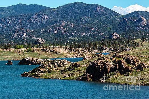 Eleven Mile Reservoir in Summer by Steve Krull