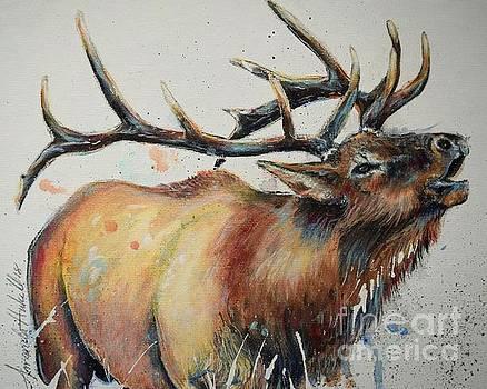 Elk 3 of 4 by Amanda Hukill