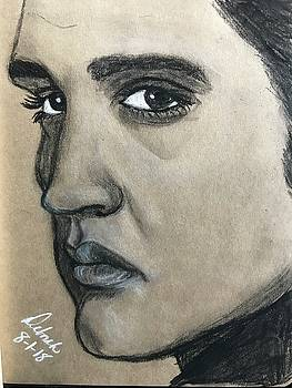 Elvis by Deborah Tincher