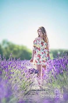 Embraced In Lavender by Evelina Kremsdorf