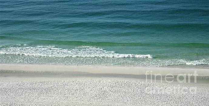 Emerald Coast Beaches by Tammie J Jordan