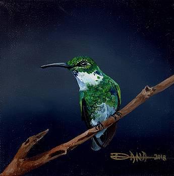 Emerald Hummer by Dana Newman
