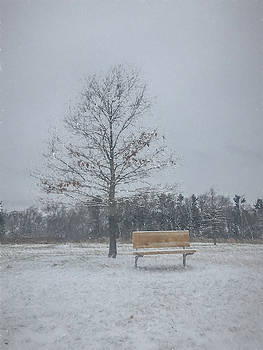Empty Bench in the Snow by Jeff Oates Photography