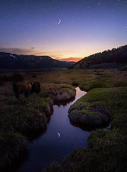 Enchanting Yellowstone / Yellowstone National Park  by Nicholas Parker