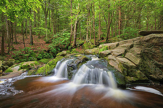 Enders State Forest Falls by Juergen Roth