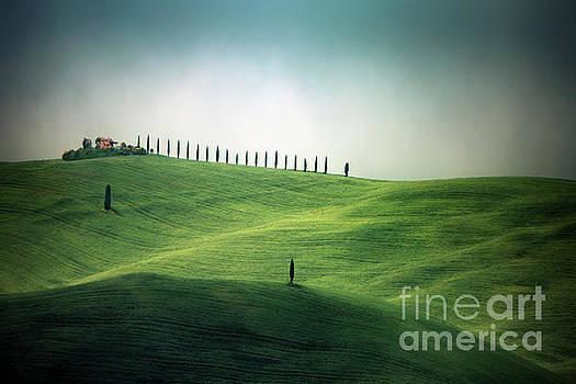 Endless Hills by Evelina Kremsdorf