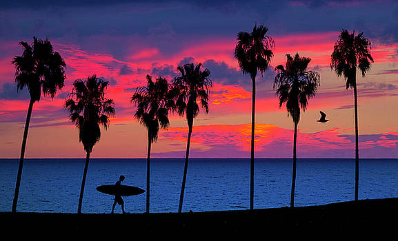 Endless Summer by John Rodrigues