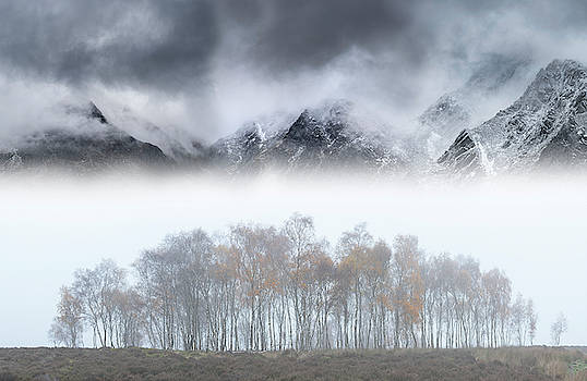 Epic landscape image in Autumn with foggy trees in front of draa by Matthew Gibson