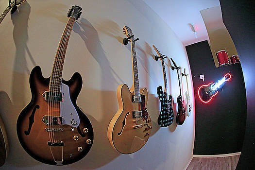 Epiphone Collection by Shoal Hollingsworth