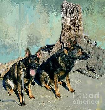 Eppy and Pantzer on the Beach by Janette Boyd