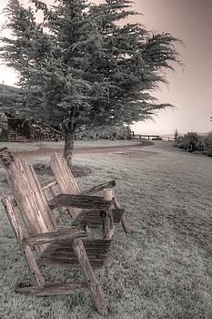 Esalen Chair mediation adirondack  by Jane Linders