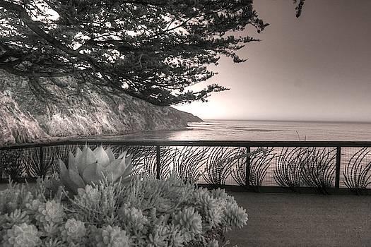 Esalen Institute Big Sur California infrared by Jane Linders