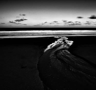 Estuary to the sea by Trinidad Dreamscape