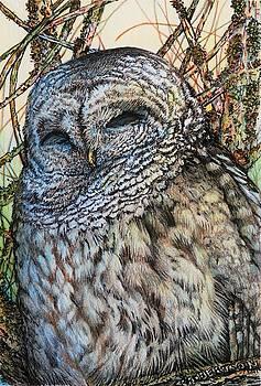 Even Owls Sleep by Catherine Robertson