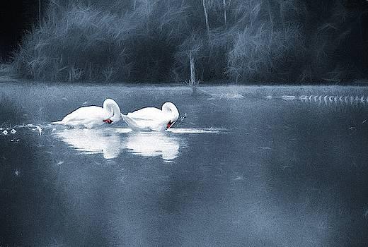 Evening Bath by Jaroslav Buna
