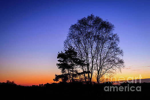 Evening Glow by Johan Vanbockryck