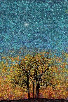 Evening Star by Daniel McPheeters