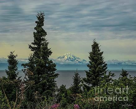 Exquisite View - Alaska by Jan Mulherin