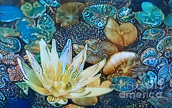 Exquisite Waterlilies by Trudee Hunter