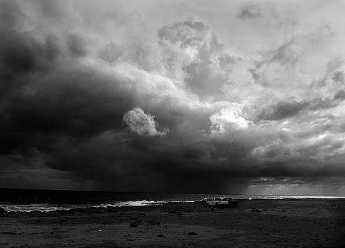 Waiting for the Storm  by Alina Oswald