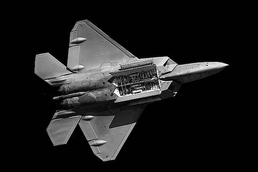 F-22 Weapons Bay by Chris Buff
