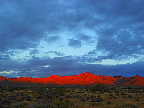 Face In The Desert Sky by James Welch