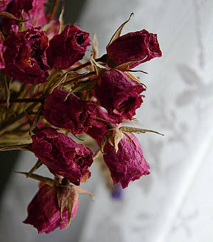 Whispering Peaks Photography - Faded Roses and Lace