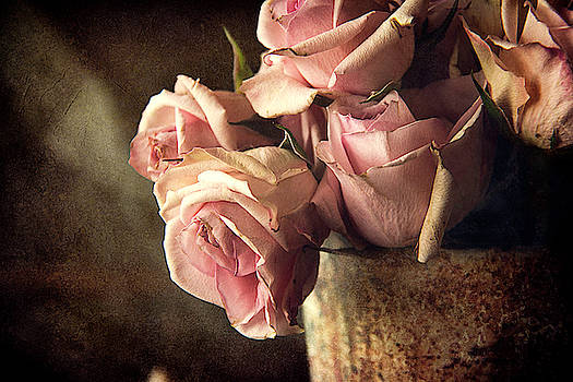 Fading Roses by Cindi Ressler