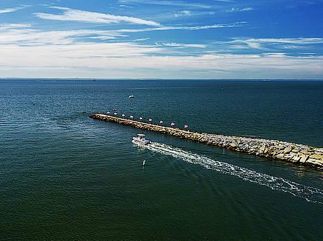Fairfield Fishing Pier Aerial by Stephanie McDowell