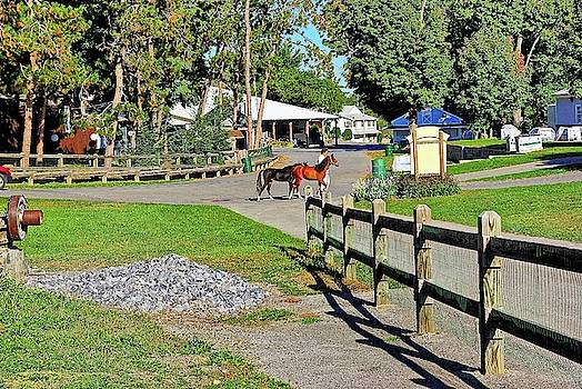 Fairgrounds in Rhinebeck New York by Zal Latzkovich