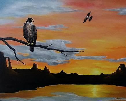 Falcon Sunset  by Danett Britt