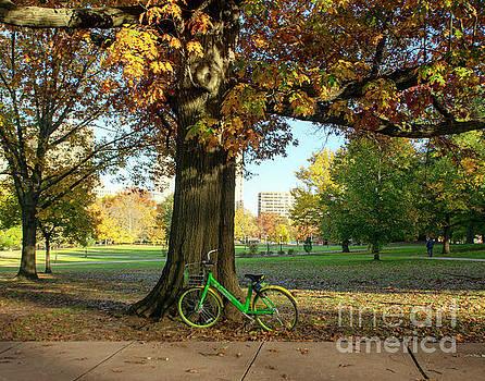 Fall Biking in Hartford by Linda Troski