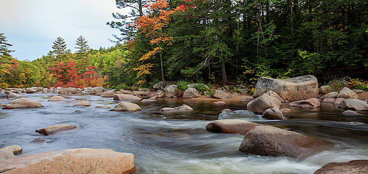 Cliff Wassmann - Fall colors along the Swift River