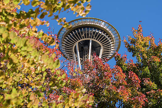 Fall Colors And The Space Needle  by Matt McDonald