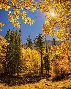 Fall Colors At The Twin Lakes by Nazeem Sheik